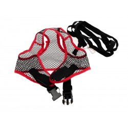 ZooMax Postroj s vodítkem 1,5 m pro střední plenema - červená