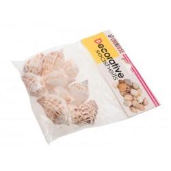 Dekorativní mušle do aquárií 75 g